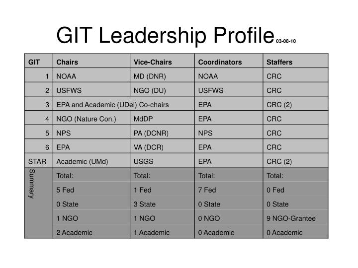 GIT Leadership Profile