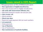 issues raised in cefs report