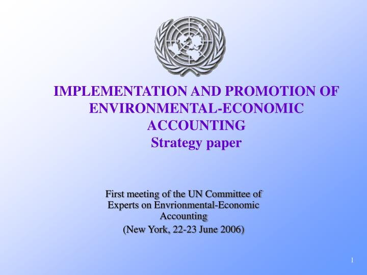 Implementation and promotion of environmental economic accounting strategy paper