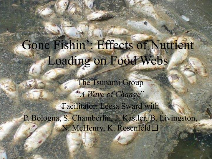gone fishin effects of nutrient loading on food webs n.