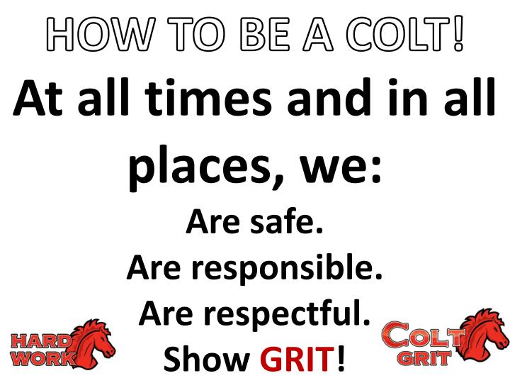 at all times and in all places we are safe are responsible are respectful show grit n.