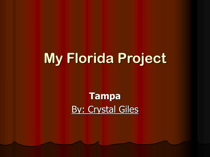 my florida project n.