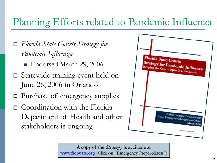 Planning Efforts related to Pandemic Influenza