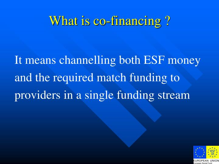 What is co-financing ?
