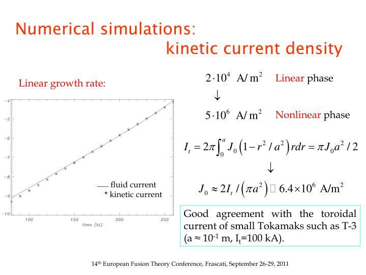 Numerical simulations: