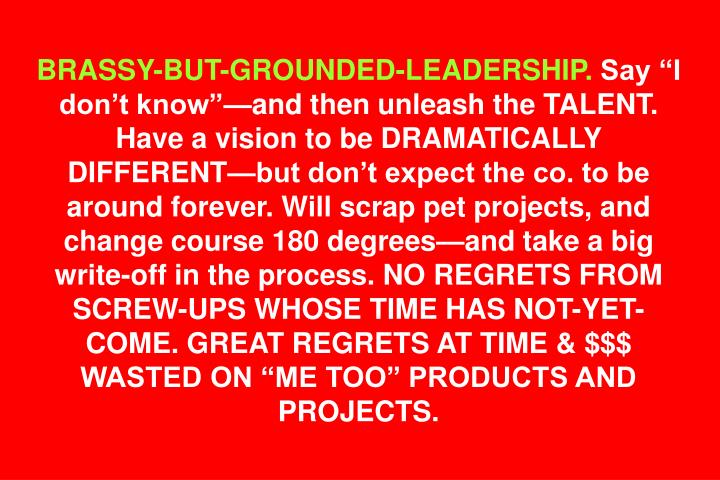 BRASSY-BUT-GROUNDED-LEADERSHIP.