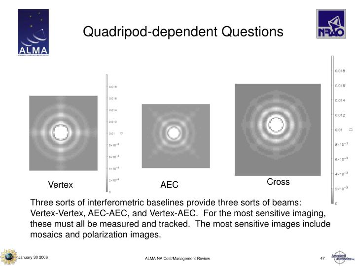 Quadripod-dependent Questions