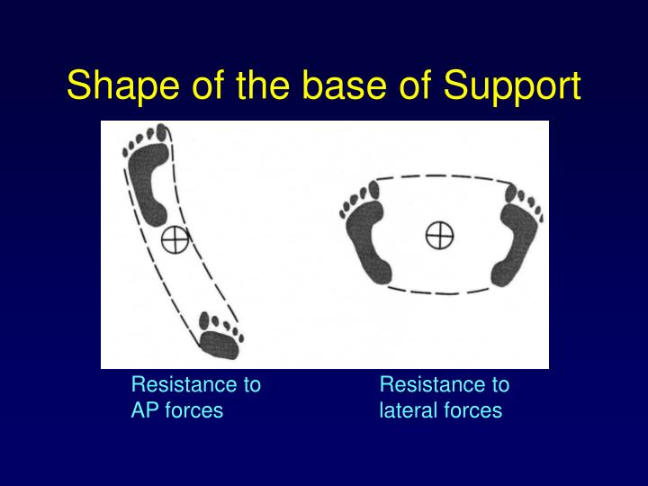Shape of the base of Support