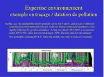 expertise environnement exemple en tra age datation de pollution
