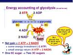 energy accounting of glycolysis must know