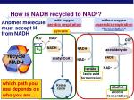 how is nadh recycled to nad