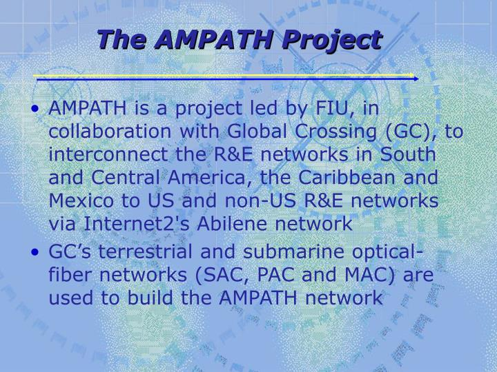 The ampath project
