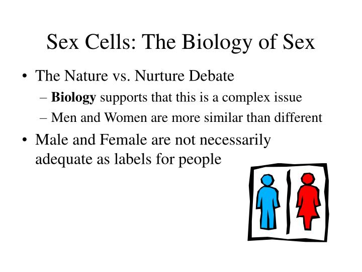 place of gender differences in the framework of the nature vs nurture debate The difference between a simple nature vs nurture essay and nature vs nurture debate essay is that in another case, a student has to defend a particular point the 1st case requires describing a chosen topic in details without forcing the target reader to take any of the existing positions.