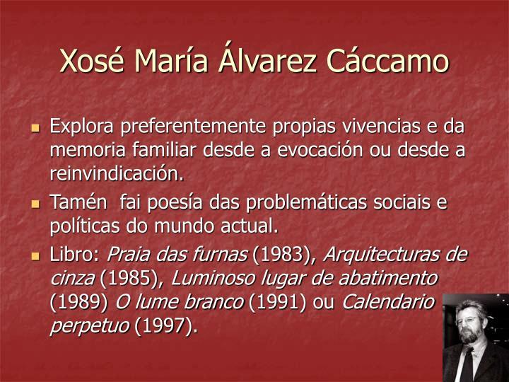 Xosé María Álvarez Cáccamo