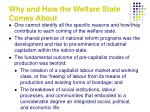 why and how the welfare state comes about