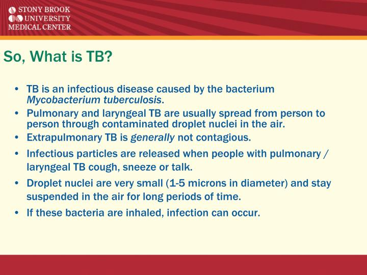 So, What is TB?