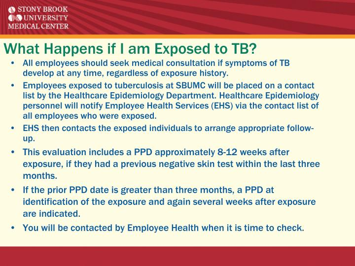 What Happens if I am Exposed to TB?