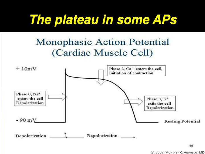 The plateau in some APs