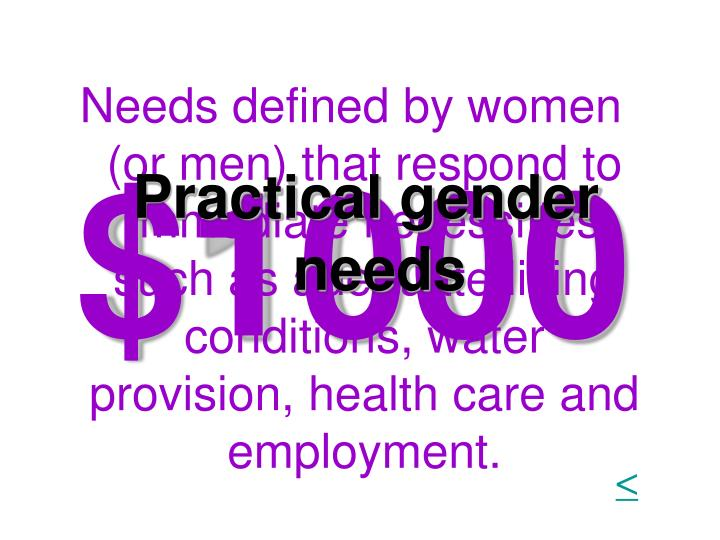 Needs defined by women (or men) that respond to immediate necessities such as adequate living conditions, water provision, health care and employment.