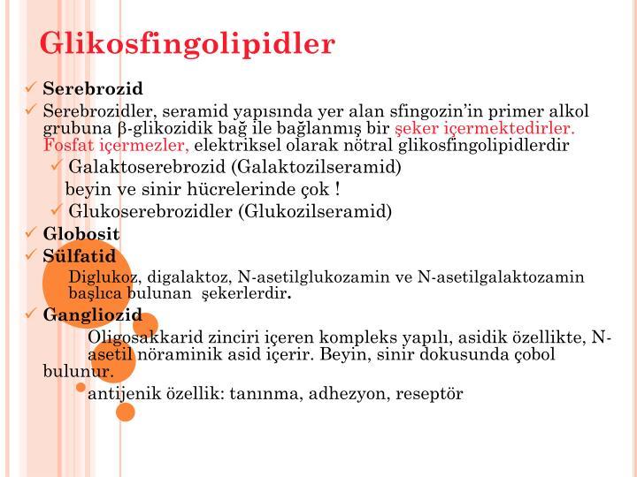 Glikosfingolipidler
