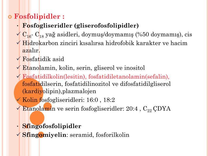 Fosfolipidler :