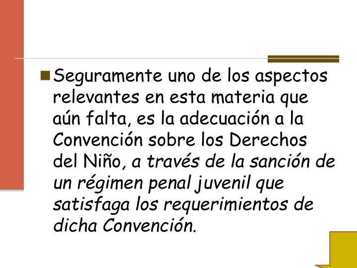 Seguramente uno de los aspectos relevantes en esta materia que aún falta, es la adecuación a la Convención sobre los Derechos del Niño