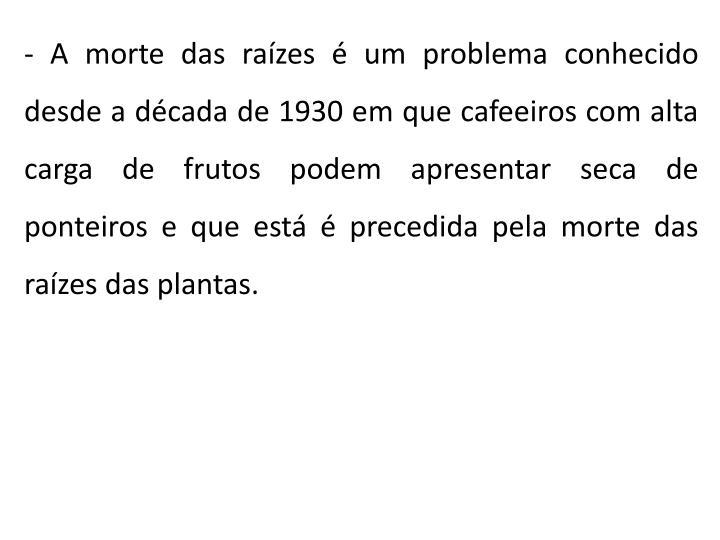 - A morte das raízes é um problema conhecido desde a década de 1930 em que cafeeiros com alta carga de frutos podem apresentar seca de ponteiros e que está é precedida pela morte das raízes das plantas.