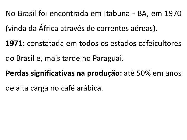 No Brasil foi encontrada em Itabuna - BA, em 1970 (vinda da África através de correntes aéreas).
