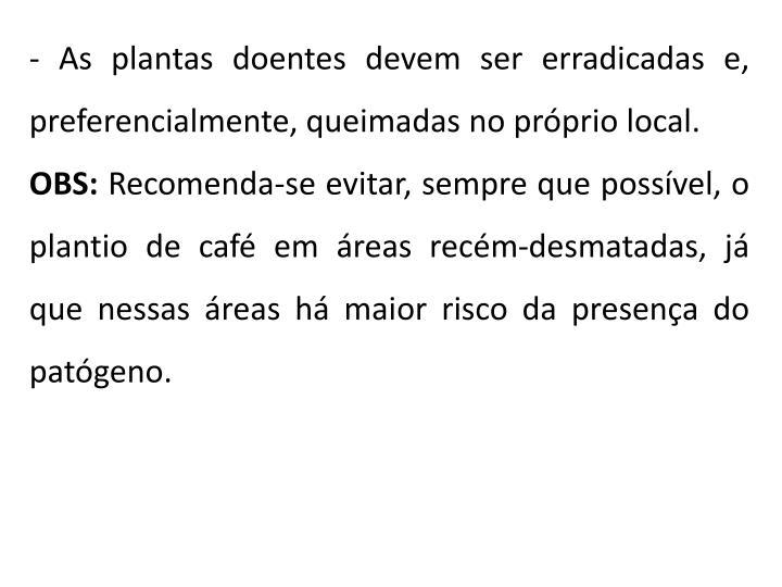 - As plantas doentes devem ser erradicadas e, preferencialmente, queimadas no próprio local.