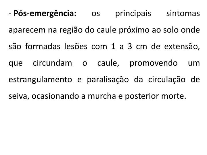 Pós-emergência: