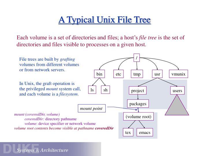 A Typical Unix File Tree