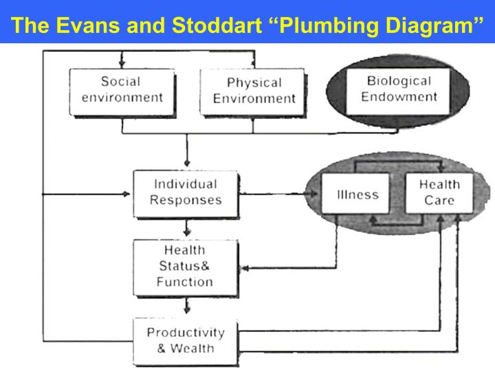 "The Evans and Stoddart ""Plumbing Diagram"""