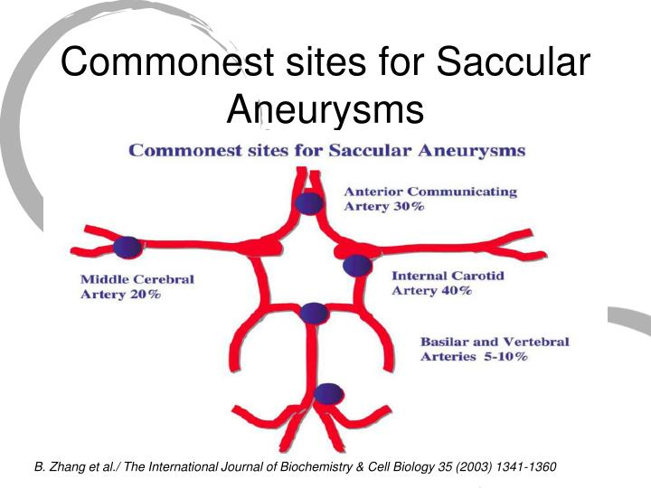 Commonest sites for Saccular Aneurysms