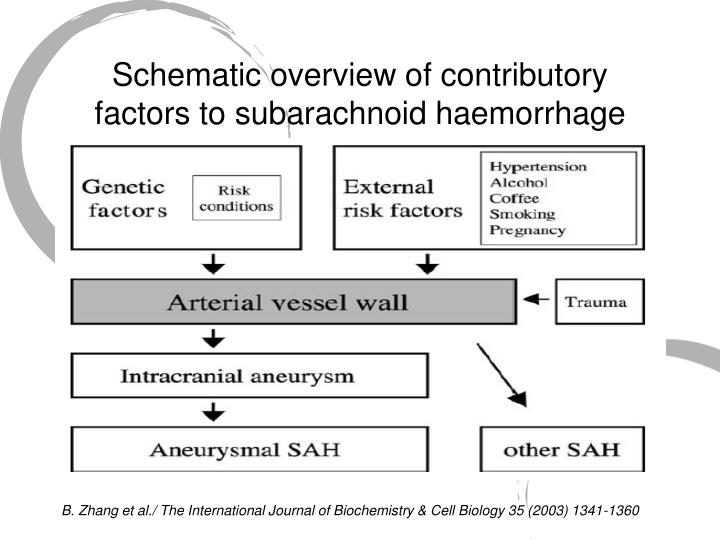Schematic overview of contributory factors to subarachnoid haemorrhage