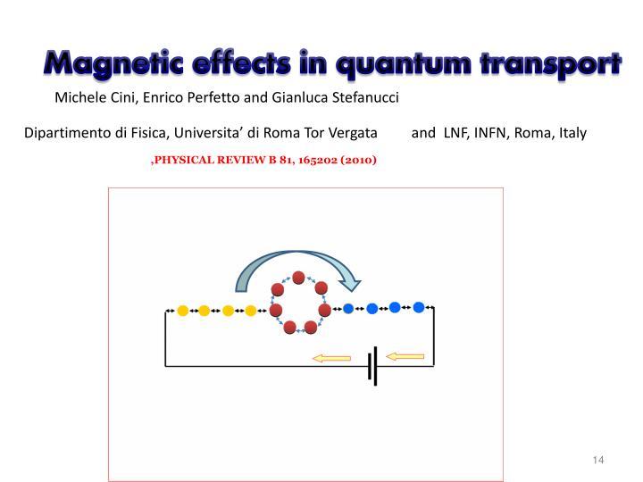 Magnetic effects in quantum transport