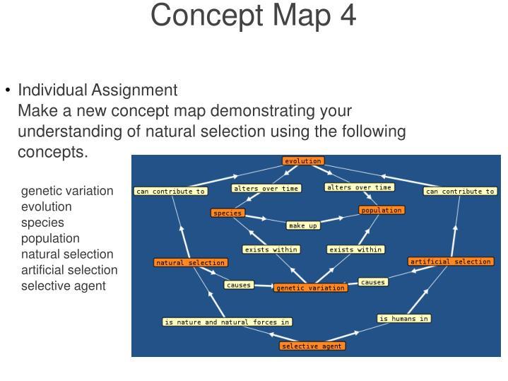 Concept Map 4