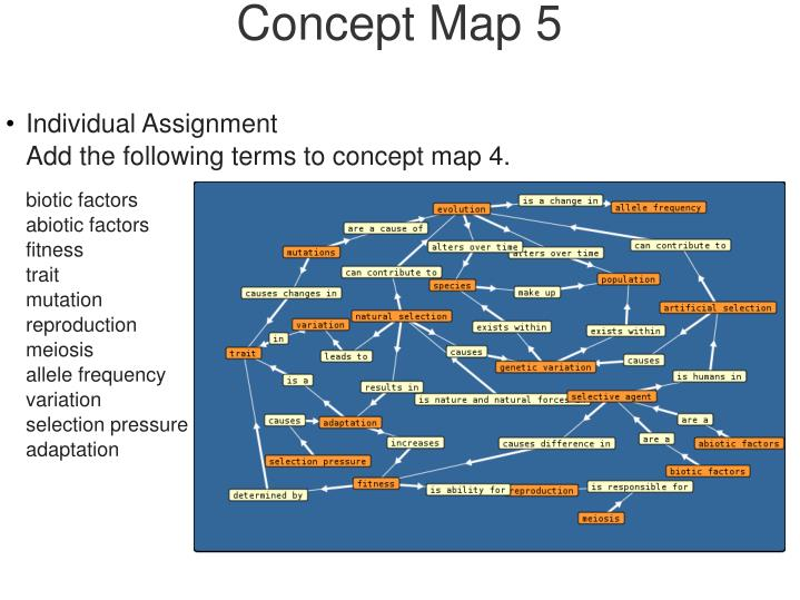 Concept Map 5