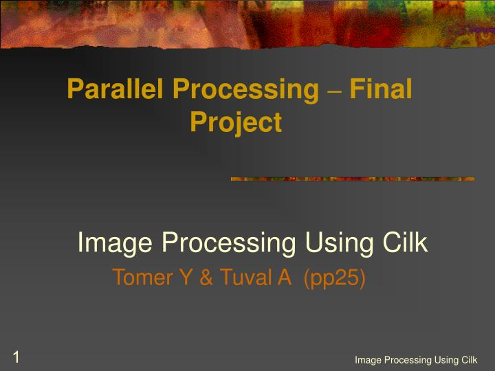 parallel processing final project n.