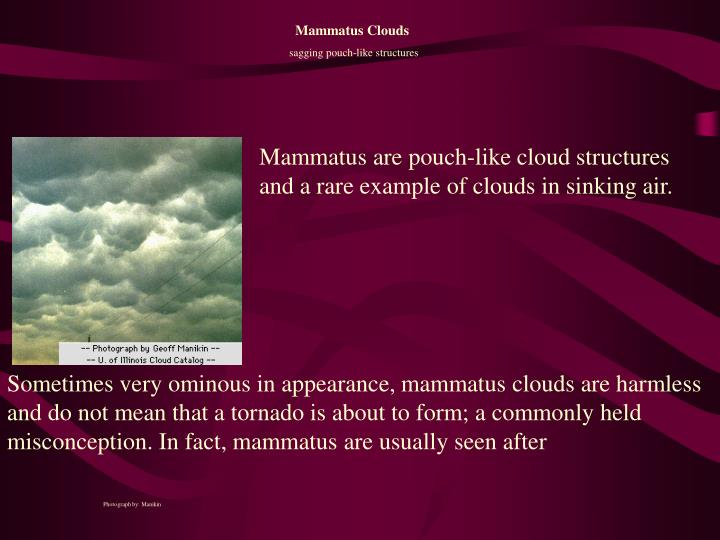 Sometimes very ominous in appearance, mammatus clouds are harmless and do not mean that a tornado is about to form; a commonly held misconception. In fact, mammatus are usually seen after
