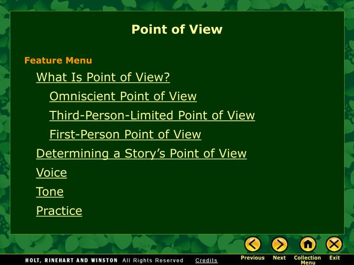 point of view n.