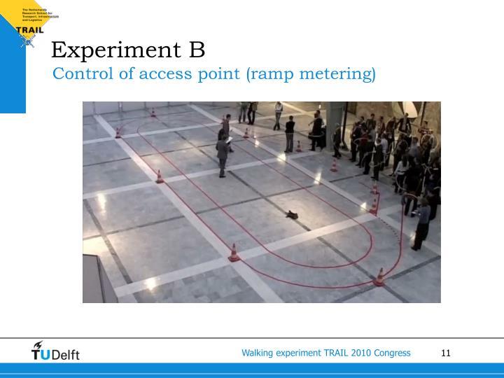 Experiment B
