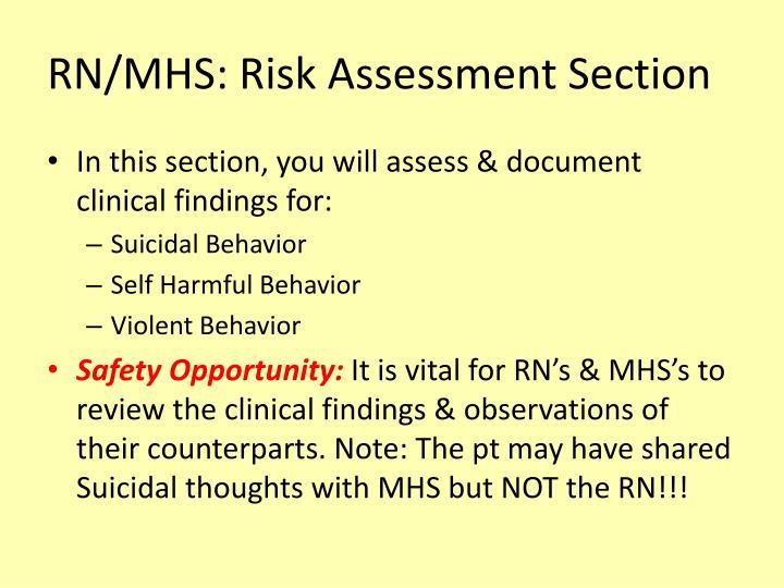 RN/MHS: Risk Assessment Section