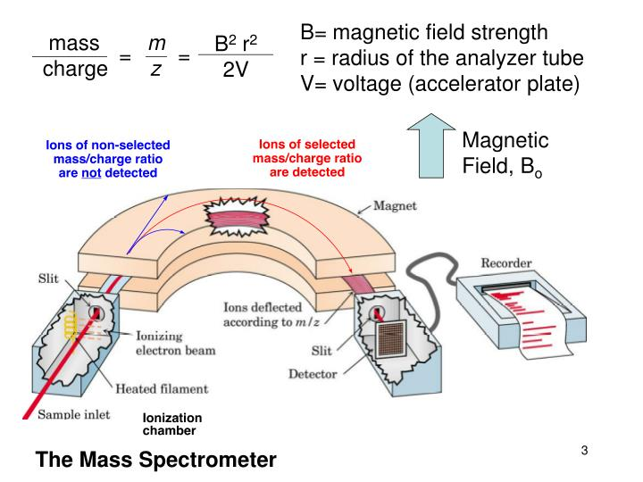 B= magnetic field strength