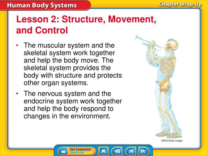 Lesson 2: Structure, Movement,