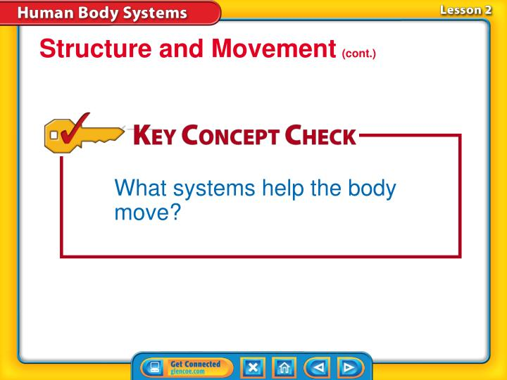 Structure and Movement