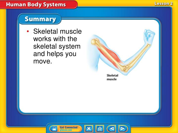 Skeletal muscle works with the skeletal system and helps you move.