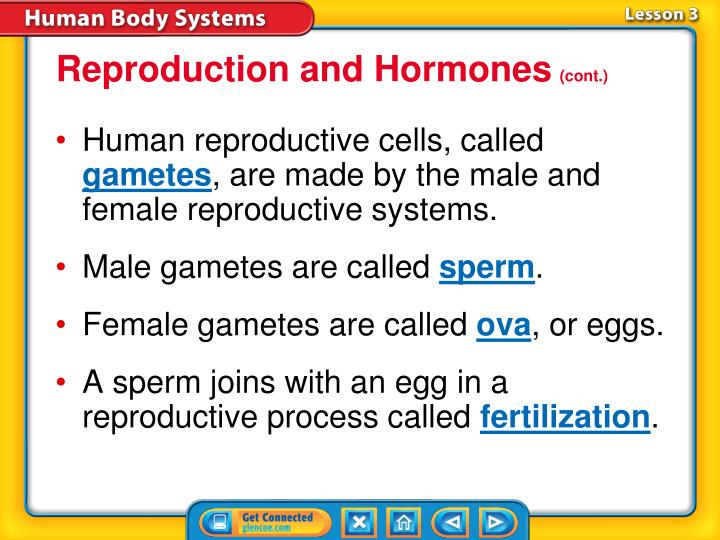 Reproduction and Hormones