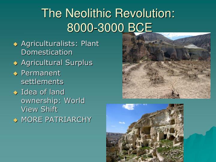 The Neolithic Revolution: