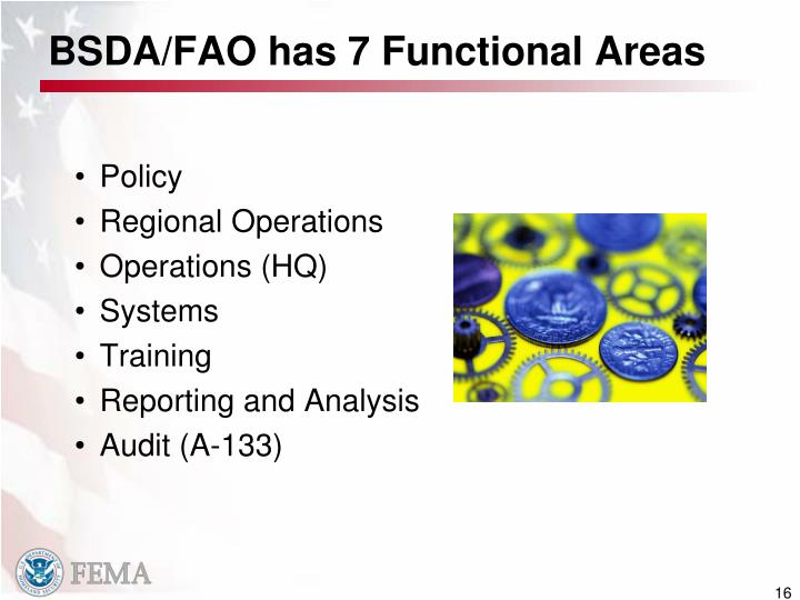 BSDA/FAO has 7 Functional Areas