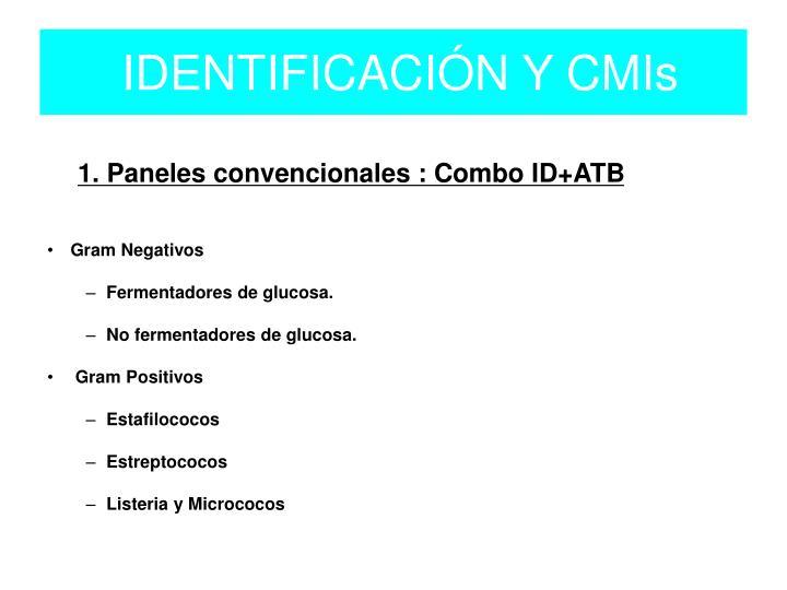 Identificaci n y cmis1
